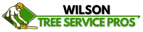 Tree Services Wilson County, NC | Tree Removal, Tree Trimming, Stump Grinding